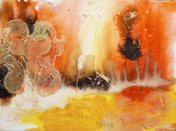 Abstract landscape painting in warm colours, inspired by The walnut