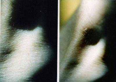 Diptych detail photos wrist, by Jofke